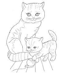 Moederpoes En Kitten Kleurplaat Gratis Kleurplaten Printen