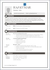 One Page Resume Format Doc Resume Blog Co One Page Excellent Resume Sample For Mba
