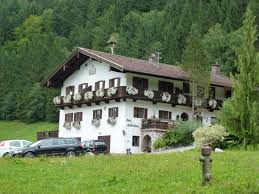 Tiere Kühe Pferde Bergsteigen Watzmann Königssee Alm Urlaub Ferien
