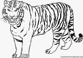 Small Picture Modest Design Tiger Coloring Pages Free Printable For Kids