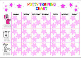 Details About Reusable Girls Potty Training Reward Chart 63 Star Stickers And A4 Chart