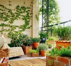 Are you concerned about privacy of your balcony? If yes, then these Balcony  Privacy