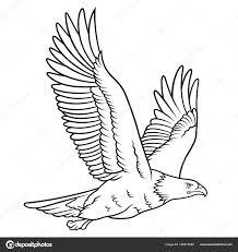 Orel Bělohlavý Skica Tento Vektorový Obrázek Může Být Použit Jako