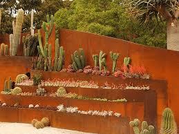 desert xeriscape and rock gardens