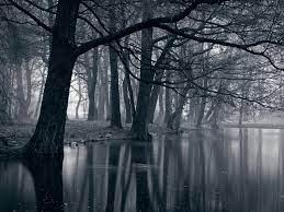 2560x1920 Mystic Park Dark Forest & Sea ...