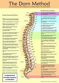 Dorn Method Chart Holistic Healing Holistic Healing Research