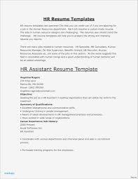 It Resume Example Resume