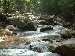 river rocks - Google Search