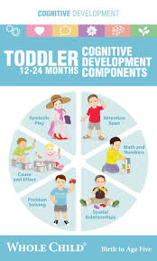 Whole Child Toddler Book Learn How Best To Encourage