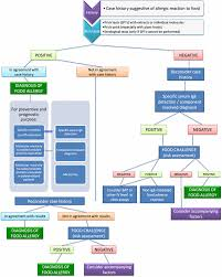 Flow Chart For The Diagnosis Of Food Allergy Download