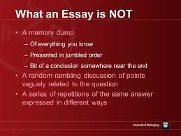 essay family relationship   pay us to write your assignment  essay family relationship