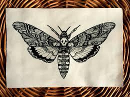 Moth Tattoo Bremerglidden Moth Tattoo Moth Tattoo Design