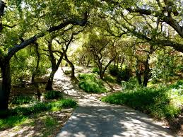 in 1937 e manchester boddy who was the publisher and owner of the los angeles ilrated daily news purchased the land that is today descanso gardens