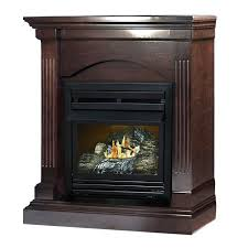 pl wood burning fireplace insert double sided ventless electric with er double sided