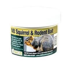 rat poison pellets home depot. Just One Bite Rat Poison Home Depot Squirrel And Rodent Paste Bait Station De . Vole Photo Best Pellets