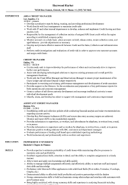 Sample Resume For Credit Manager Credit Manager Resume Samples Velvet Jobs 6