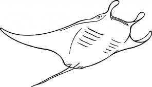 Small Picture Ocean Animal Coloring Pages regarding Inspire to color an images