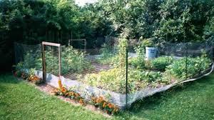 deer proof garden fence. Deer Proof Garden Fence Fencing Ideas Photo 3 Diy