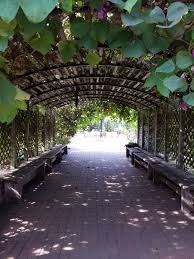 entrance pergola at kansas city community gardens covered in edible and ornamental vines kccg