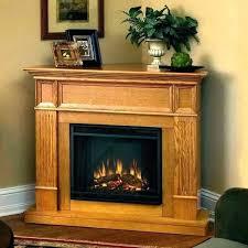 duraflame electric fireplace insert logs with heater dfi020aru w