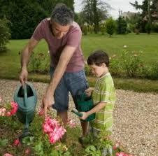 Cultivar RosasCuidados De Los Rosales