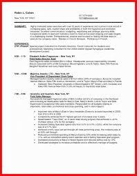 Sales Associate Resume Examples Fascinating Sales Associate Resume Examples Awesome Retail Sales Associate