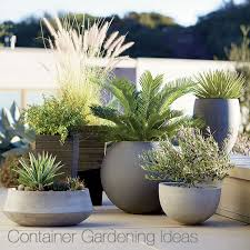 gardening pots and containers
