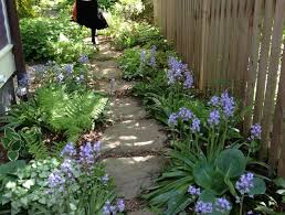 Small Picture Best 20 Narrow garden ideas on Pinterest Small gardens Side