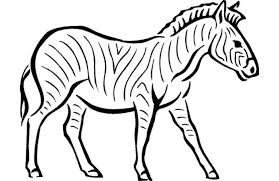 Vector black and white zoo alphabet with cute animals. Coloring Pages Printable Zebra Coloring Page