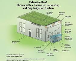 Garden Sprinkler System Design Beauteous Extensive Roof With A Rainwater Harvesting And Drip Irrigation