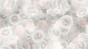 roses white wedding background