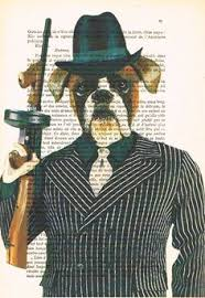 Image result for dog al capone