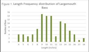 Musky Length Weight Chart Lake Lauderdale Black Bass Survey Nys Dept Of