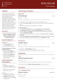 Product Manager Resume 2019 Guide With Samples Examples