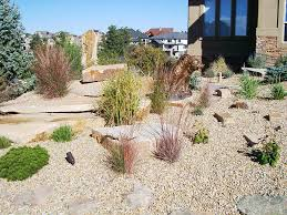 xeriscape landscaping | Low water usage in a landscape is becoming a  necessity in our Colorado
