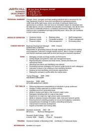 Business Development Manager CV manager personal summary