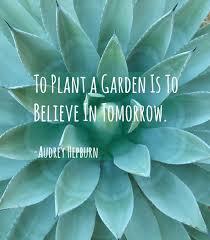 Garden Love Quotes