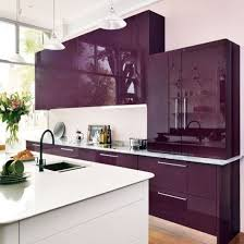 Modern Kitchen Color Choices | Purple kitchen, Kitchen cabinetry and  Contemporary design