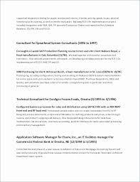 Career Summary Examples For Resume New Career Summary Example For Resume Lovely Resume Executive Summary