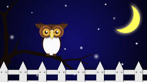 night clipart. Contemporary Night Night Owl And Clipart D