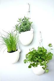 wall mounted planters wall mounted planters wall wall mounted garden planters  wall mount plant hangers indoor