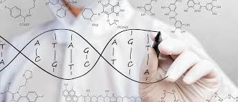 全 基因 合成