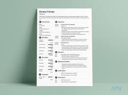 Cv Format It Professional Curriculum Vitae Cv Format 20 Examples Tips