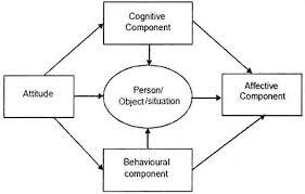 essay on attitude top essays human behaviour psychology behavioral component