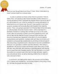 my dream job essay nursing my dream job nicu nurse by andrea