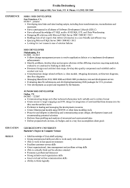 Ssis Resume Sample Ssis Developer Resume Samples Velvet Jobs 1