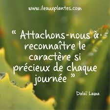 Jus Daloe Pensées Citation Citations Inspirantes Et Belles