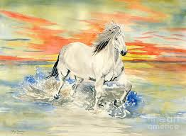 white horse painting wild white horse by melly terpening
