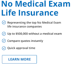 Life Insurance Quotes No Medical Exam