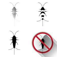 Silverfish 101 8 Interesting Facts 4 Things That Kill It Pest Wiki